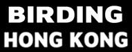 Best Hong Kong Blogs 2019 @birdinghongkong.com